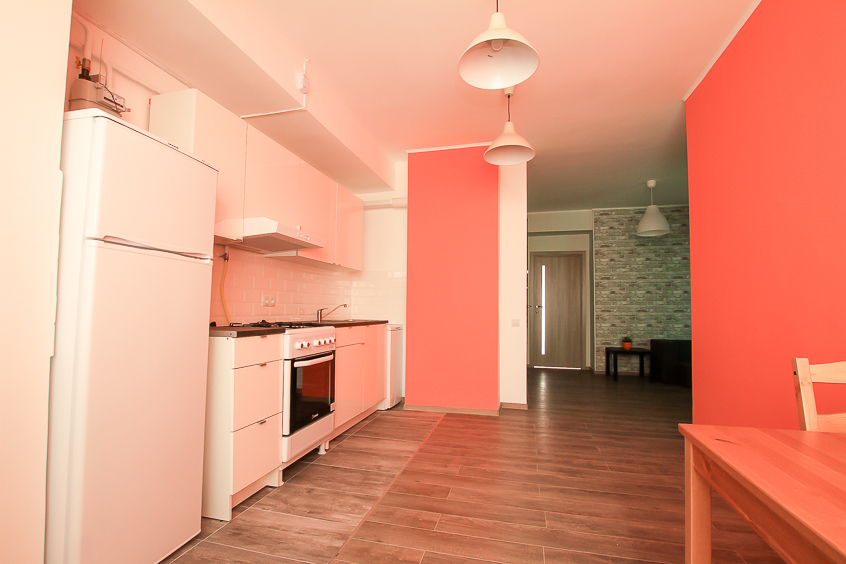 Rent-Apartment-in-Chisinau-Albisoara-strett (3 of 1).jpg