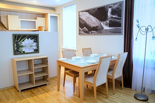 Rent Chisinau apartment in city center: 2 rooms, 1 bedroom, 45 m²